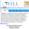 The Well Website image